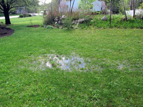 Backyard Conversation - Franklin Soil and Water Conservation District