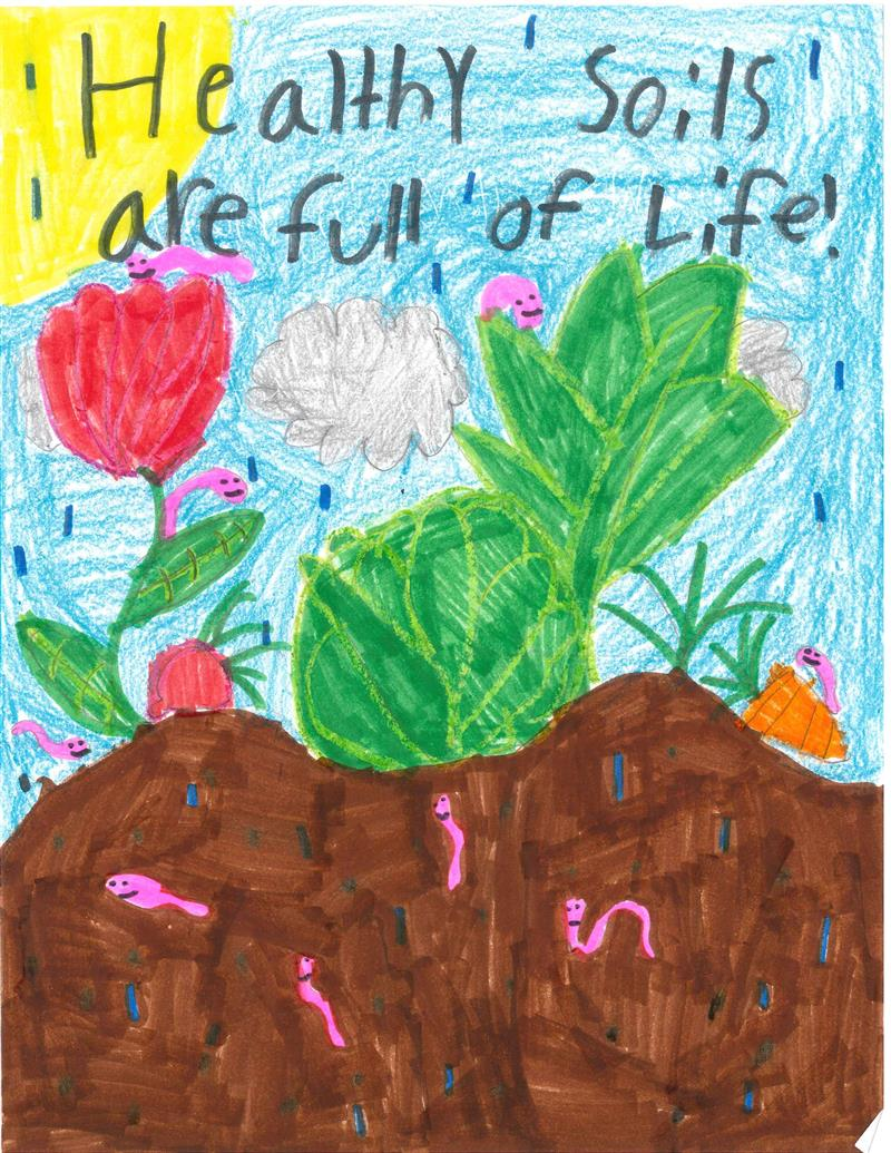 Classroom Theme Ideas For Teachers ~ Conservation poster contest franklin soil and water